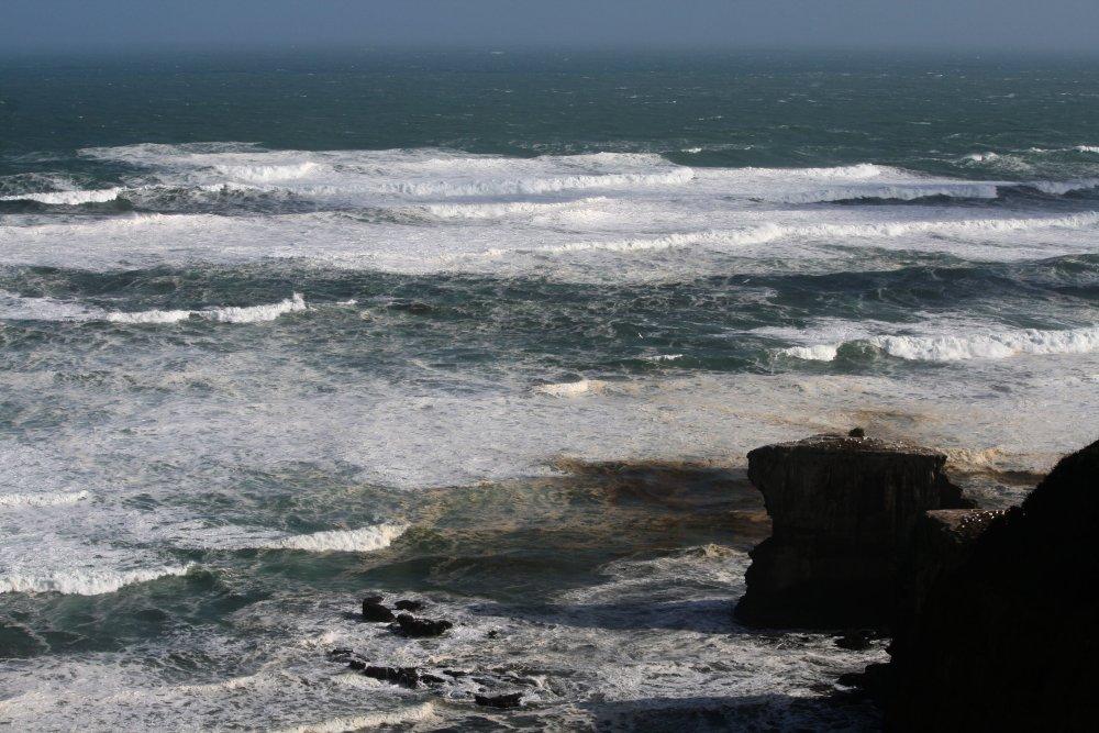 Gannet Rocks - Muriwai